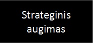 Strateginis augimas